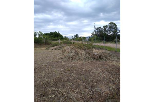 Foto de terreno habitacional en venta en  , barrio morelos, san pablo etla, oaxaca, 0 No. 02
