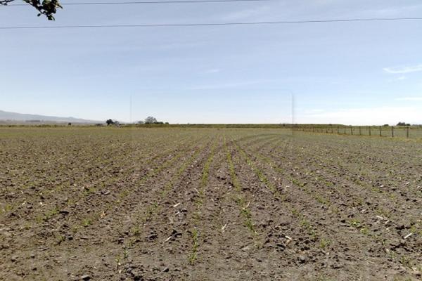 Foto de terreno industrial en venta en  , barrio san gabriel, toluca, méxico, 6504406 No. 04