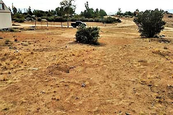 Foto de terreno comercial en venta en belisario dominguez , ojos negros, ensenada, baja california, 7152132 No. 04