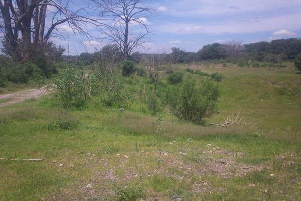 Foto de terreno habitacional en venta en  , bellavista, teocaltiche, jalisco, 7977152 No. 02
