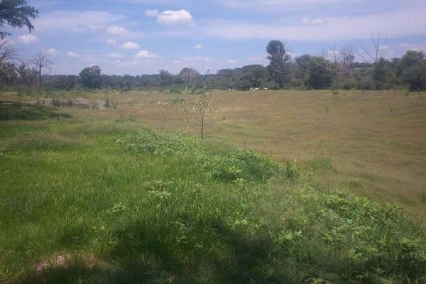 Foto de terreno habitacional en venta en  , bellavista, teocaltiche, jalisco, 7977152 No. 03