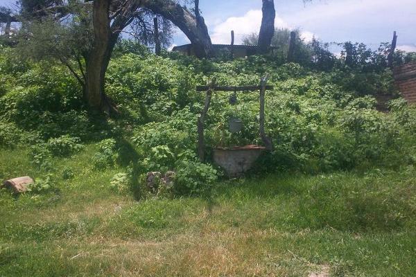 Foto de terreno habitacional en venta en  , bellavista, teocaltiche, jalisco, 7977152 No. 18