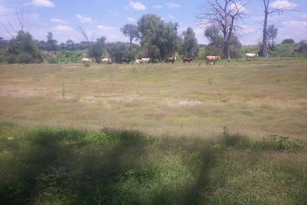 Foto de terreno habitacional en venta en  , bellavista, teocaltiche, jalisco, 7977152 No. 19