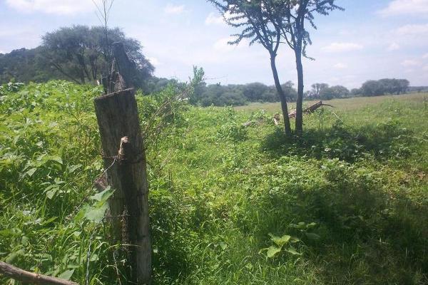 Foto de terreno habitacional en venta en  , bellavista, teocaltiche, jalisco, 7977152 No. 20