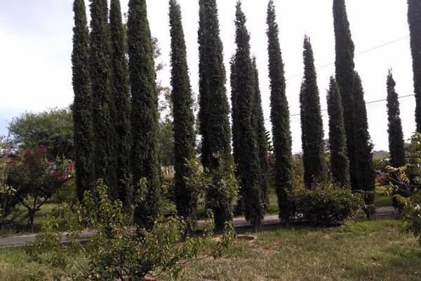 Foto de casa en venta en  , bellavista, teocaltiche, jalisco, 7977732 No. 08