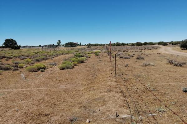 Foto de terreno habitacional en venta en benafed 1, la rumorosa, tecate, baja california, 8430547 No. 02