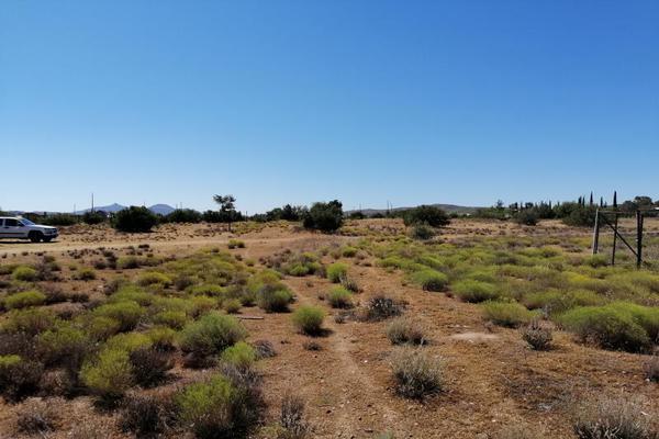 Foto de terreno habitacional en venta en benafed 1, la rumorosa, tecate, baja california, 8430547 No. 08