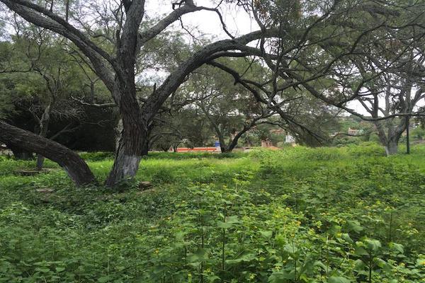 Foto de terreno habitacional en venta en benito juárez 4900, rio blanco, zapopan, jalisco, 7127544 No. 16