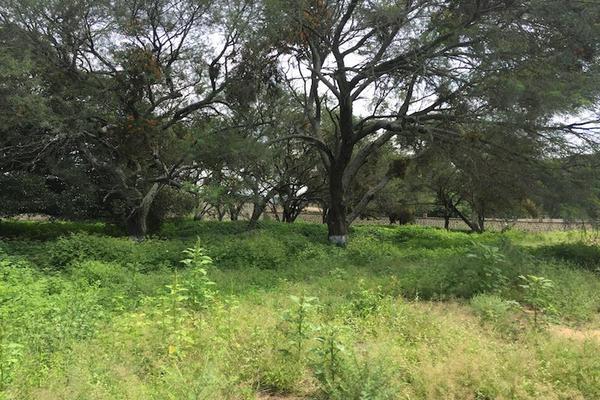 Foto de terreno habitacional en venta en benito juárez 4900, rio blanco, zapopan, jalisco, 7127544 No. 17