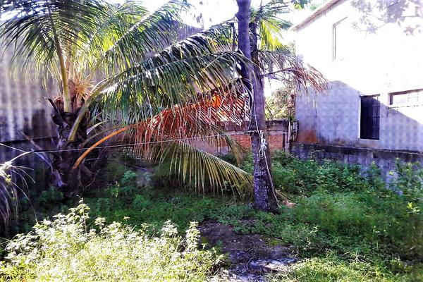 Foto de casa en venta en benito juárez , hipódromo, ciudad madero, tamaulipas, 5793261 No. 09