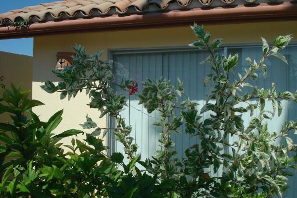 Foto de casa en venta en  , benito juárez, la paz, baja california sur, 5676756 No. 04