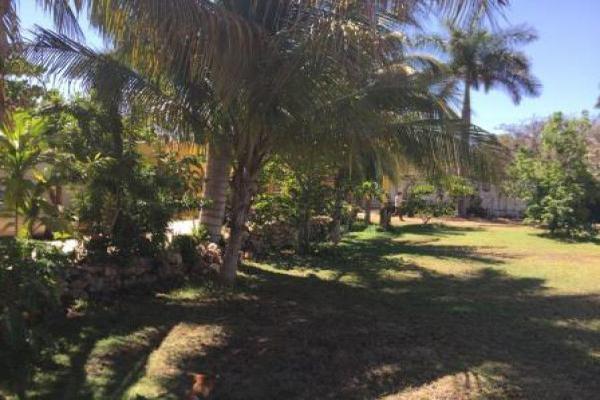 Foto de terreno habitacional en renta en  , benito juárez nte, mérida, yucatán, 7179317 No. 04