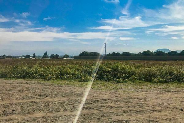 Foto de terreno habitacional en venta en benito juarez , san juan temamatla, temamatla, méxico, 20349890 No. 06