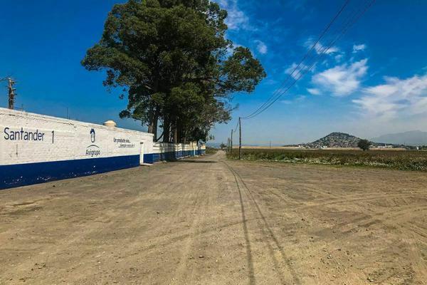 Foto de terreno habitacional en venta en benito juarez , san juan temamatla, temamatla, méxico, 20349890 No. 10