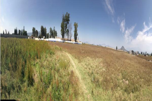Foto de terreno habitacional en venta en benito juarez , san juan temamatla, temamatla, méxico, 20349890 No. 12