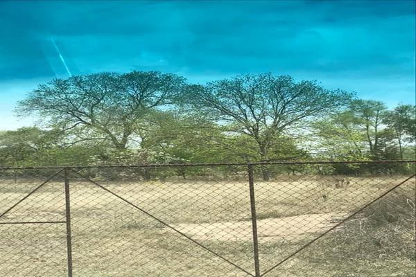 Foto de rancho en venta en  , benito juárez, santa maría del río, san luis potosí, 18382213 No. 07