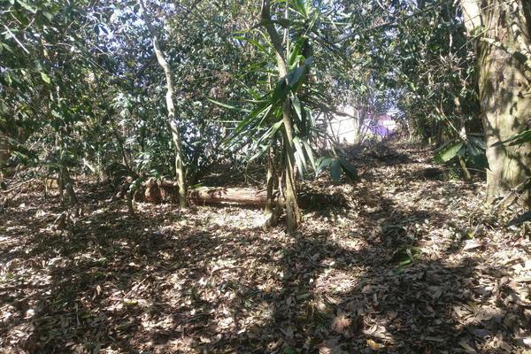 Foto de terreno habitacional en venta en  , benito juárez, xalapa, veracruz de ignacio de la llave, 7482238 No. 02