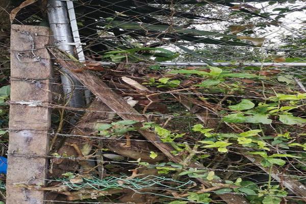 Foto de terreno habitacional en venta en  , benito juárez, xalapa, veracruz de ignacio de la llave, 7482238 No. 04
