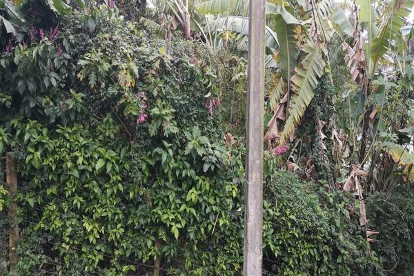 Foto de terreno habitacional en venta en  , benito juárez, xalapa, veracruz de ignacio de la llave, 7482238 No. 06