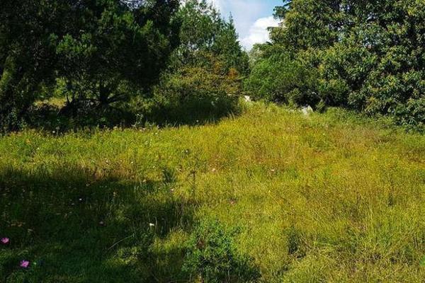 Foto de terreno habitacional en venta en  , la ranchería, progreso de obregón, hidalgo, 8063965 No. 01
