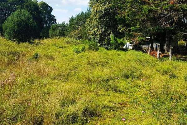 Foto de terreno habitacional en venta en  , la ranchería, progreso de obregón, hidalgo, 8063965 No. 02