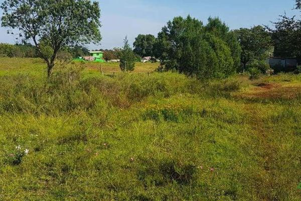 Foto de terreno habitacional en venta en  , la ranchería, progreso de obregón, hidalgo, 8063965 No. 04
