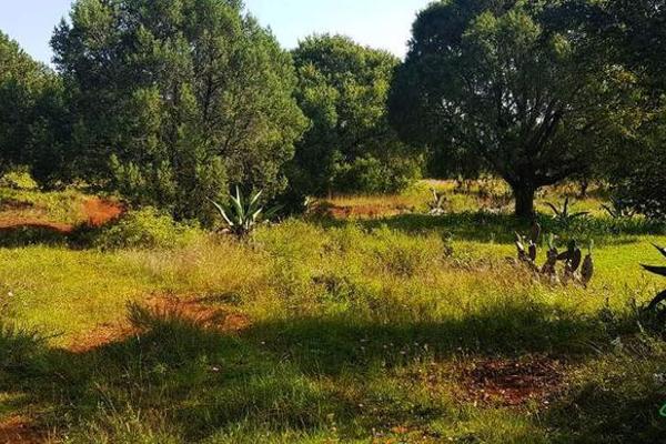 Foto de terreno habitacional en venta en  , la ranchería, progreso de obregón, hidalgo, 8063965 No. 05