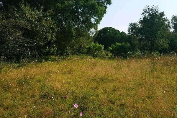 Foto de terreno habitacional en venta en  , la ranchería, progreso de obregón, hidalgo, 8063965 No. 06