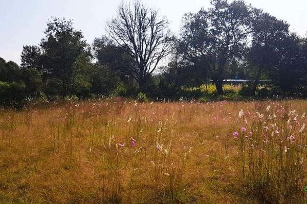 Foto de terreno habitacional en venta en  , la ranchería, progreso de obregón, hidalgo, 8063965 No. 07