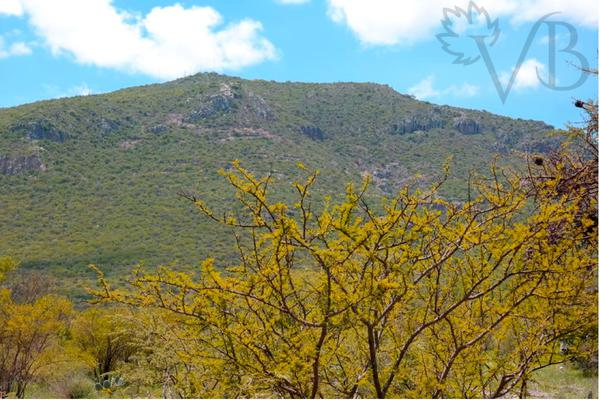 Foto de terreno habitacional en venta en bernal , bernal, ezequiel montes, querétaro, 17728844 No. 04