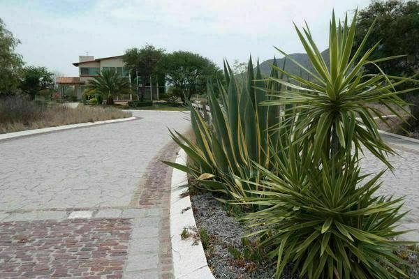 Foto de terreno habitacional en venta en  , bernal, ezequiel montes, querétaro, 20384637 No. 08