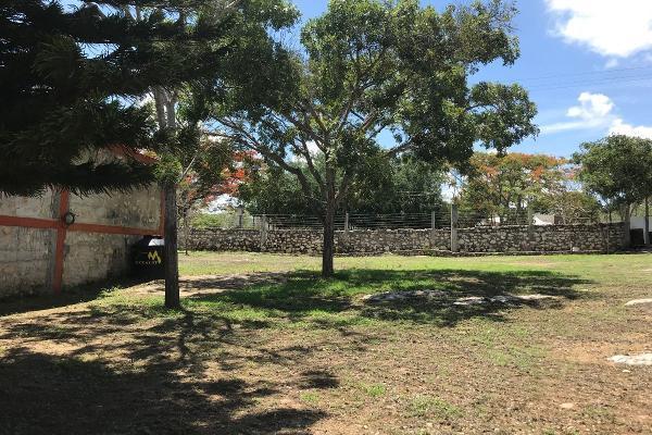 Foto de rancho en venta en  , berriozabal centro, berriozábal, chiapas, 6165392 No. 03