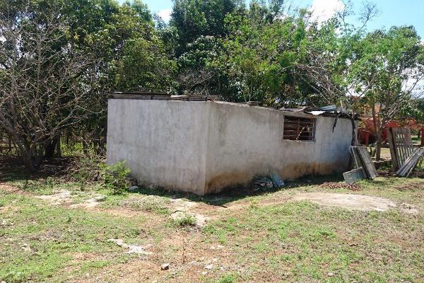 Foto de rancho en venta en  , berriozabal centro, berriozábal, chiapas, 6165392 No. 10