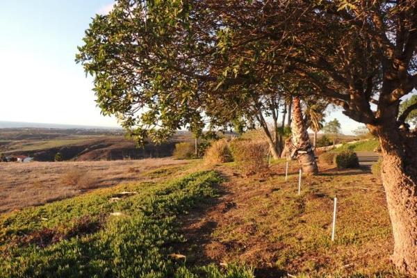 Foto de terreno comercial en venta en blvrd real del mar , real del mar, tijuana, baja california, 6187744 No. 12