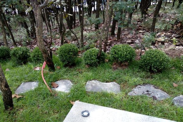 Foto de casa en venta en bosque 3, el palomar secc jockey club, tlajomulco de zúñiga, jalisco, 12764485 No. 14