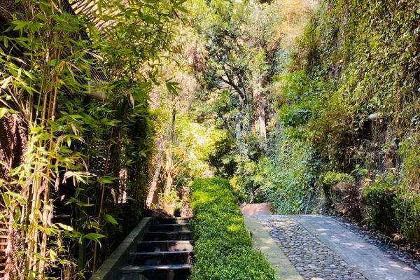 Foto de casa en venta en bosque de almendros , bosque de las lomas, miguel hidalgo, df / cdmx, 0 No. 26