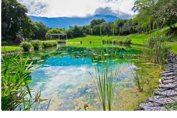Foto de terreno habitacional en venta en  , bosque residencial, santiago, nuevo león, 5302026 No. 14