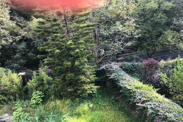 Foto de terreno industrial en venta en bosques de cerezos 105, lomas de chapultepec vii sección, miguel hidalgo, df / cdmx, 7140600 No. 04