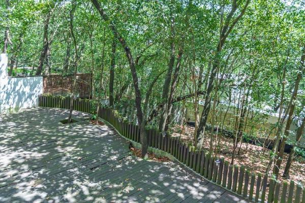 Foto de casa en venta en  , bosques de san ángel sector palmillas, san pedro garza garcía, nuevo león, 16325594 No. 08