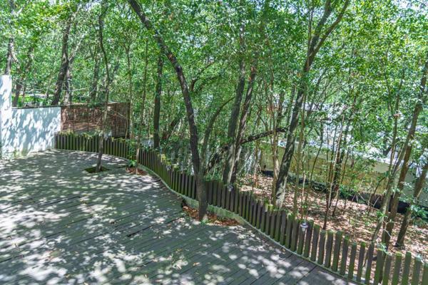 Foto de casa en venta en  , bosques de san ángel sector palmillas, san pedro garza garcía, nuevo león, 16949255 No. 26