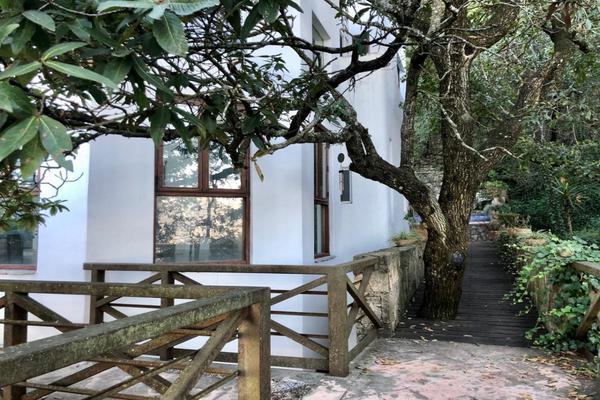 Foto de casa en venta en  , bosques de san ángel sector palmillas, san pedro garza garcía, nuevo león, 17364281 No. 19