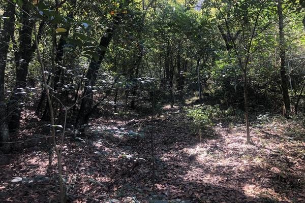 Foto de terreno habitacional en venta en  , bosques de san ángel sector palmillas, san pedro garza garcía, nuevo león, 17877022 No. 01