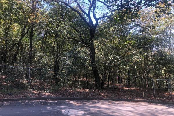 Foto de terreno habitacional en venta en  , bosques de san ángel sector palmillas, san pedro garza garcía, nuevo león, 17877022 No. 09
