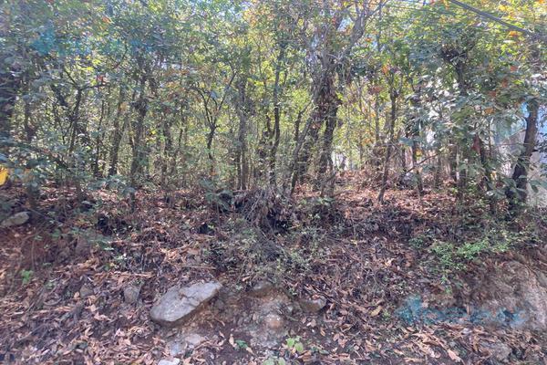 Foto de terreno habitacional en venta en  , bosques de san ángel sector palmillas, san pedro garza garcía, nuevo león, 0 No. 03
