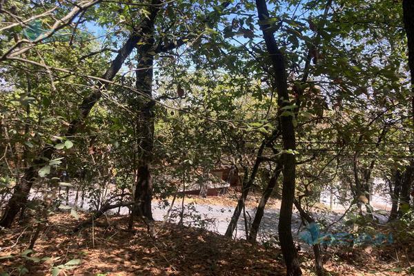 Foto de terreno habitacional en venta en  , bosques de san ángel sector palmillas, san pedro garza garcía, nuevo león, 0 No. 04