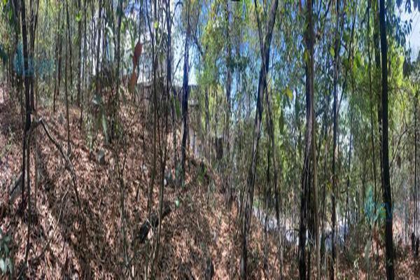 Foto de terreno habitacional en venta en  , bosques de san ángel sector palmillas, san pedro garza garcía, nuevo león, 0 No. 08