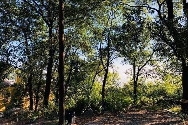 Foto de terreno habitacional en venta en bosques de san angel sector palmillas, san pedro garza garcía, nuevo león, 66290 , bosques de san ángel sector palmillas, san pedro garza garcía, nuevo león, 0 No. 03