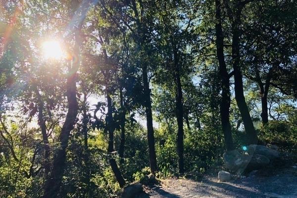 Foto de terreno habitacional en venta en bosques de san angel sector palmillas, san pedro garza garcía, nuevo león, 66290 , bosques de san ángel sector palmillas, san pedro garza garcía, nuevo león, 0 No. 04