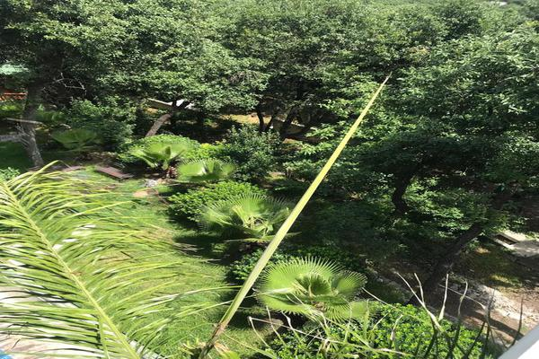 Foto de casa en venta en  , bosques de san ángel sector palmillas, san pedro garza garcía, nuevo león, 8166572 No. 31