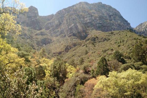 Foto de terreno habitacional en venta en  , bosques de santa catarina, santa catarina, nuevo león, 21283189 No. 02